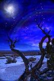 Desert Twilight Royalty Free Stock Photo