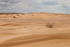 Desert under a blue sky with clouds Royalty Free Stock Photo