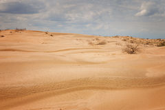 Desert under a blue sky with clouds Stock Images