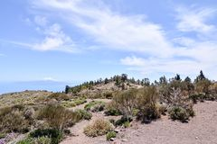 Desert valley landscape. Desert valley at foot of the volcano Teide on Tenerife Canary Islands Spain Stock Images