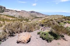 Desert valley landscape. Desert valley at foot of the volcano Teide on Tenerife Canary Islands Spain Stock Photo