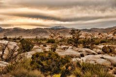 Desert Valley Stock Photos