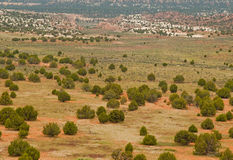 Desert valley studded with juniper trees. Red sandstone wide valley studded with wide spread juniper trees with desert mountains in the distance in Grand Royalty Free Stock Photo