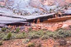 Desert varnish at Zion. Sandstone with desert varnish at Zion National Park Stock Photography