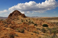 Desert view with cloudy sky in Joshua Tree. Beautiful desert view with cloudy sky in Joshua Tree National Park, California, USA Royalty Free Stock Photos