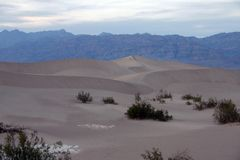 Desert view of death valley Royalty Free Stock Image