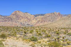 Desert view from Highway 160, Nevada, USA Stock Image