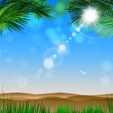 Desert View Through Palm Trees. Shiny desert tropical background with palms and sunny blurrry lights Stock Photography