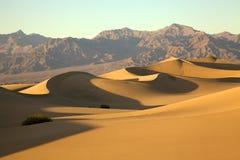 Desert View. The setting sun casts long shadows across this desert landscape Stock Image
