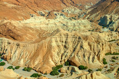 Desert views Stock Image