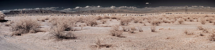 Desert Village. Panorama of a distant desert village Royalty Free Stock Image
