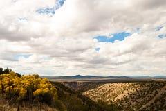 Desert Vista Stock Image