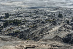 Desert of Volcano Bromo. Indonesia Stock Image