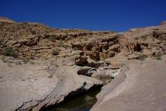 Desert Wadi Royalty Free Stock Images