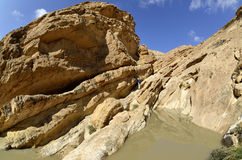 Desert wadi in Negev at spring, Israel. Royalty Free Stock Photos
