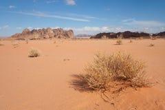 Desert of Wadi Rum Stock Photos