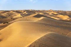 Desert Wahiba Oman Royalty Free Stock Photos