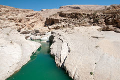 Desert and water. Wadi Bani Khalid - In close proximity to Omani desert, a perennial source of fresh water and its canyons Royalty Free Stock Photos