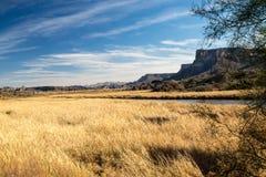 Desert Wetlands Vista Stock Photography