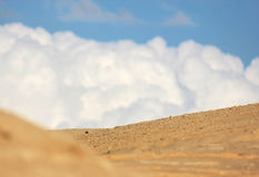 Desert and white clouds Royalty Free Stock Photo
