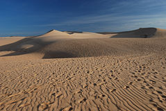 Desert, white sand dune Royalty Free Stock Photos