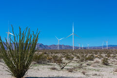 Desert Wind Farm Stock Photography