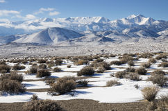 Desert Winter Royalty Free Stock Images