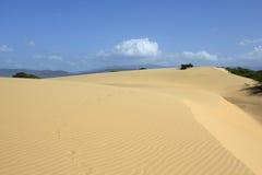 Desert XI Royalty Free Stock Images