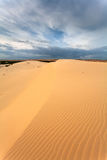 Desert with yellow sand Royalty Free Stock Photography