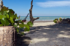 Deserted beach in a bay in Ecuador Royalty Free Stock Images