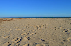 A Deserted Beach Stock Image