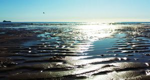 Deserted beach. Contoured beach after the tide has gone out Royalty Free Stock Photos