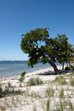 A deserted beach in Florida Stock Photography