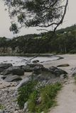 Deserted beach in Hobart, Tasmania with rocks and walkpath  in t. Deserted beach in Hobart, Tasmania with rocks and walkpath in the foreground on an overcast day Stock Photography