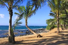 Deserted beach in Maui Royalty Free Stock Photos