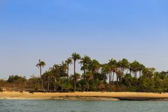 Deserted beach with palm trees in the island of Orango in Guinea Bissau. Orango is part of the Bijagos Archipelago; Concept for travel in Africa and summer royalty free stock photo