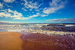 Deserted beach. Stormy sea Royalty Free Stock Photo