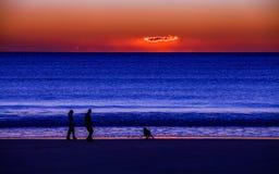 Couple walking a dog on beach Stock Photo