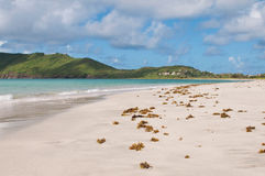 Deserted beach at Vieux Fort Royalty Free Stock Photography