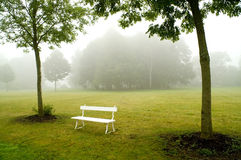 Deserted bench. Deserted white bench on a freshly mown meadow stock photography