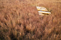 Deserted boat in withered grass. A deserted boat is in a withered grass in an autumn morning Stock Photo
