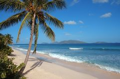 Deserted Caribbean beach. Beautiful deserted white sand beach in the British Virgin Islands stock image