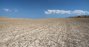 Deserted  cereal farmland  after harvesting Royalty Free Stock Photo