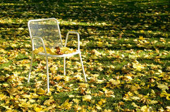Deserted chair. Empty chair in a parc with autumn leaves. With space for copy stock photos
