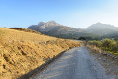 Deserted country road. Crete. Royalty Free Stock Image