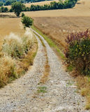 Deserted country road Royalty Free Stock Images