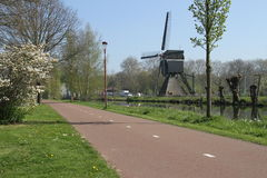 Deserted cyclepath with blossoms and windmill Stock Images