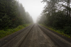 Deserted dirt road in the fog Stock Photos