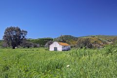 Deserted farmhouse in colourful field in Spain Stock Photo