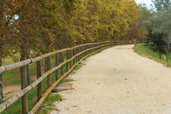 Deserted gravel hiking path Stock Photography